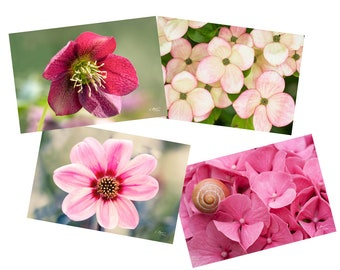 Set of 4 postcards pink and red flowers, garden flowers, botanical photos, pretty flowery postcards,
