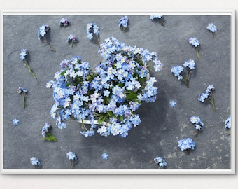 Heart with forget-me-not flowers, flower photo wall decor photo, forget-me-not.