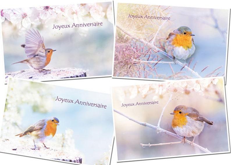 4 Cartes Anniversaire Oiseau Rouge Gorge Zen Bird Birthday Etsy