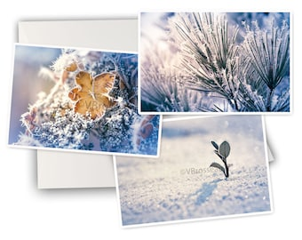 3 cards winter macro Frost - macro photo winter - winter 3 greeting cards - winter postcards
