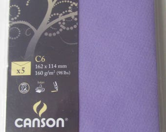 Set of 5 cards Canson - Mi-Teintes expression - Blueberry color is dark purple