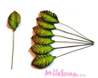 Set of 10 sheets of paper Green stems embellishing scrapbooking *.