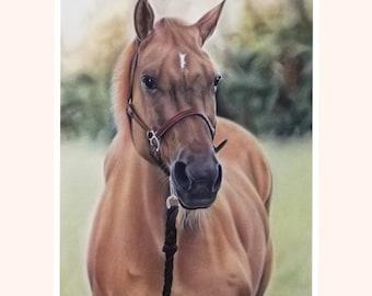 Personalized horse portrait,Custom horse portrait,Gift for horse lovers,Horse memorial,Custom gift horse loss,Custom horse drawing,Gift idea