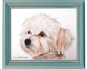 Custom pet drawing | Etsy
