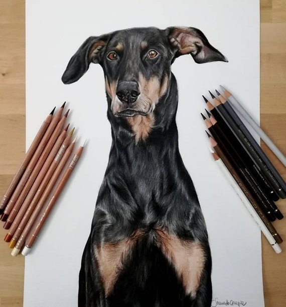 Gift Idea For Him Original Custom Pet Portrait from Photo Pencil Drawing of Your Dog