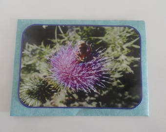 envelope gift + Thistle bee photo card