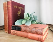 Vintage Red Books Set of 4 Assortment Red Books Antique Farmhouse Fixer Upper Style Accent Prop Assorted Display Decor