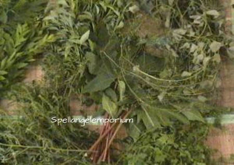 Santeria Herbs for Religious Cleansing / Hierbas de Santo para limpiesas  religiosos ~Santeria, Palo, Yoruba, Ifa~