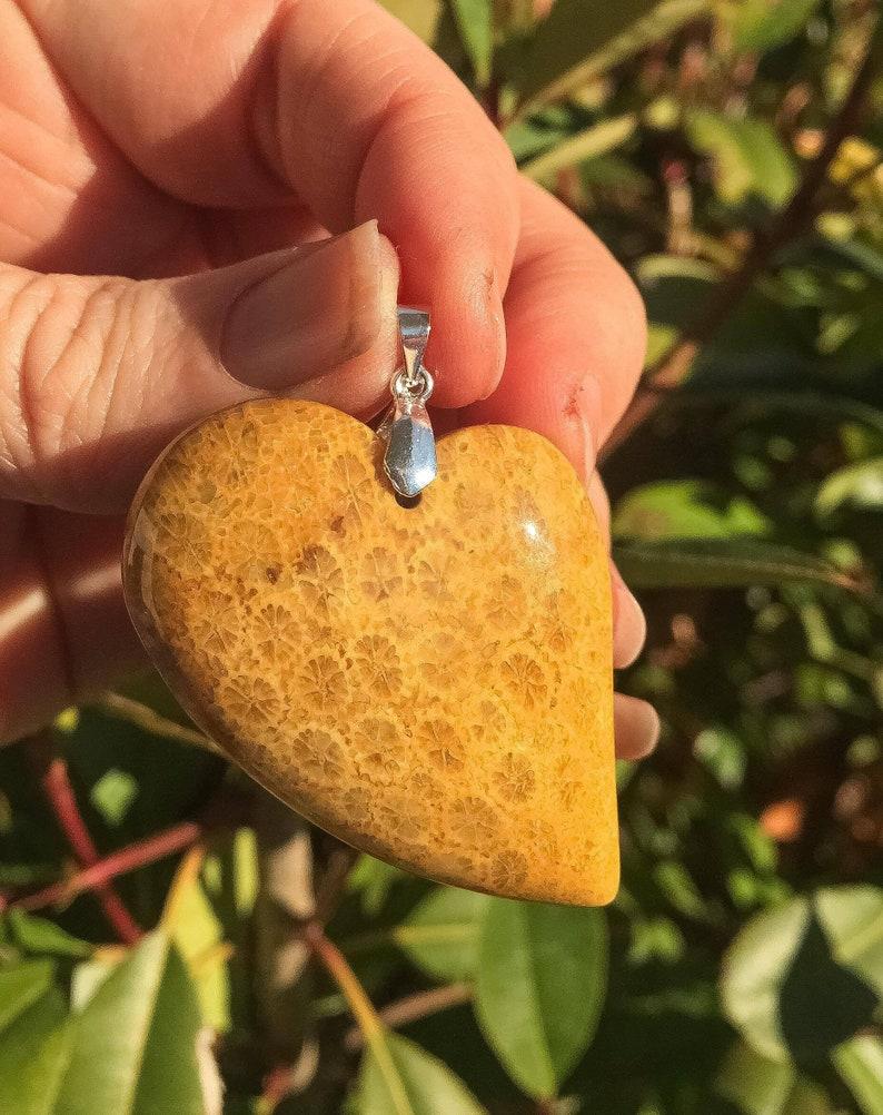 Love Fossil Heart Shape Heart Pendant Coral Coral Fossil Pendant Agatized Fossil