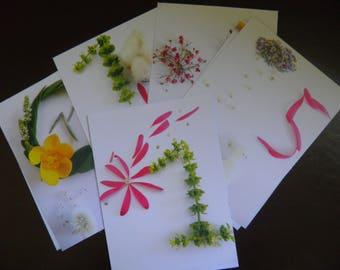 Cartes premiers mois, cartes naissances, accessoires de fêtes, lot de 12, cadeaux de naissance, cadeaux baby shower, kit premiers mois