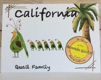 California Quail Family, Avocado, Collectible Greeting Card