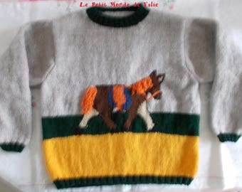sweater mixed 8 pony pattern