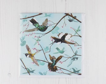 Hummingbird Greetings Card