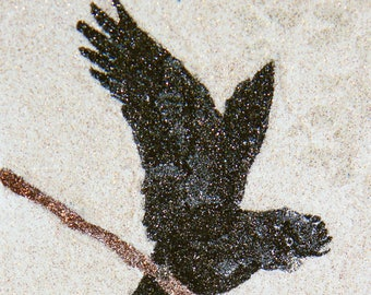 Glitter Painting - Red-Tailed Black Cockatoo