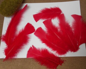 10 red feathers about 13 cm