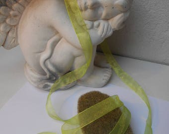 1 meter - lime green organza Ribbon 17 mm