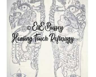 10 Pack Essential Oil Reflexology Chart Oil Use Guide 8 5 Etsy