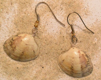 Rigadell * beige seashell earrings