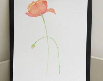Watercolor red poppies original