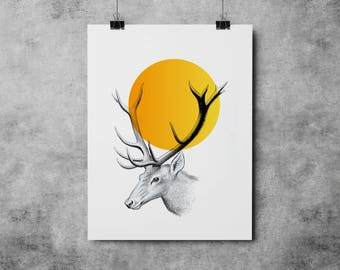Deer Illustration 003
