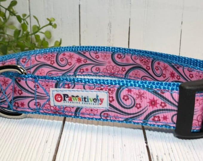 "Dog Collar Paisley Pink/Blue 1"""