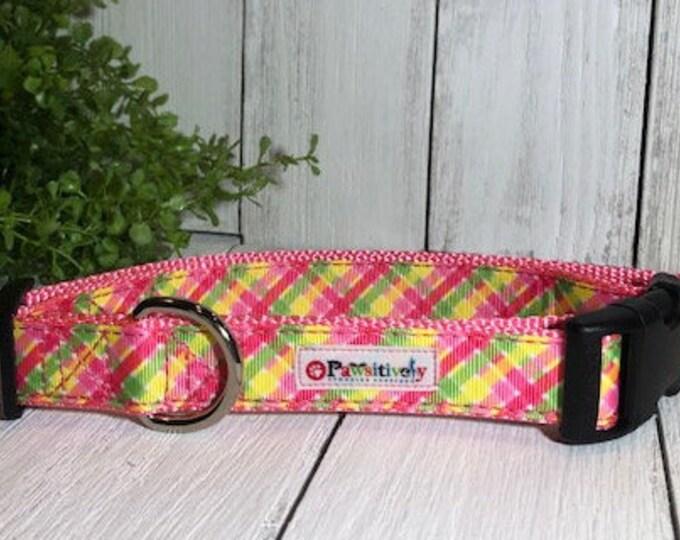 Summer Plaid, Dog Collar