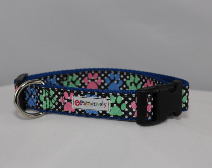 "Blue Paws 1"" Dog Collar"