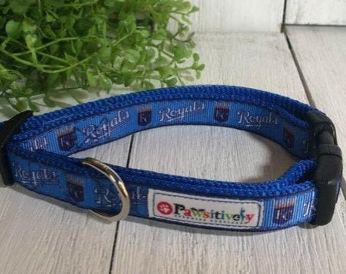 """Kansas City Royals, 5/8""""Dog Collar"""