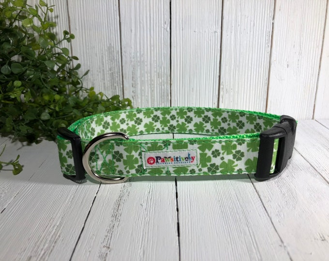 Dog Collar St. Patrick's Day, Shamrocks