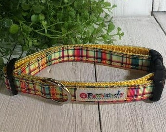"Summer Plaid, 5/8""Dog Collar"
