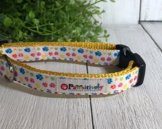 "Rainbow Paw Print, 5/8""Dog Collar"