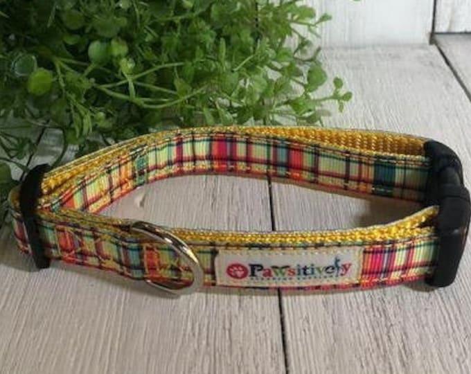 "Summer Plaid, 5/8""Dog Collar"