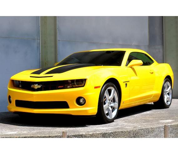 2010-11-12 Chevrolet Camaro Convertible Muscle Car Art Print 16X20-10 colors