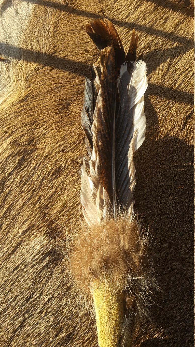 Feather Fan Cerimony Dancing Smudge Fan Native American Dance  Fan