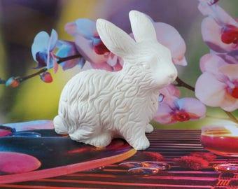 big rabbit pattern to paint plaster
