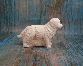 bouvier plaster paint type dog