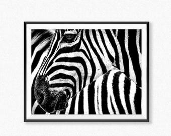 Zebra Print, Zebra Poster, Safari Animal Wall Art, Animal Print, Zebra  Photography, Safari Poster, Animal Decor, Black And White Poster