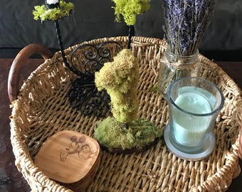 Moss Table Numbers - wedding table numbers