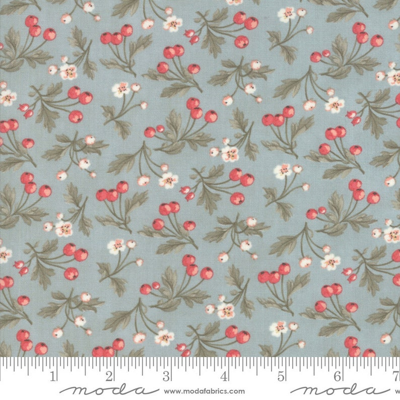 Dewdrop 3 Sisters Fruitful Daybreak Fabric is sold in 12 yard increments 44244-15
