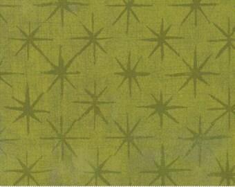 Grunge Seeing Stars - Kelp - 30148-50