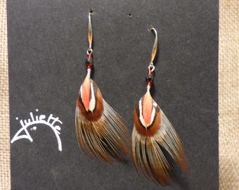 feathers with silver hook earrings