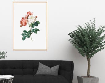 Red White Roses Print Art Rose Flowers Drawing Poster Printable Flower Floral Modern Home Wall Decor Artwork Downloadable