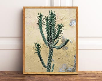 Yellow Cactus Photography Print Art Modern Printable Poster Artwork Succulent Photo Home Wall Decor Botanical Downloadable