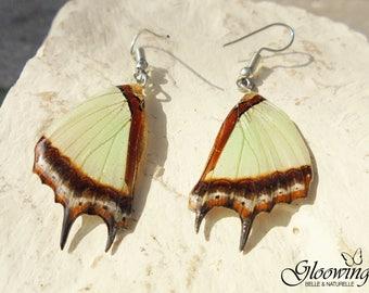 Butterfly woman earrings.
