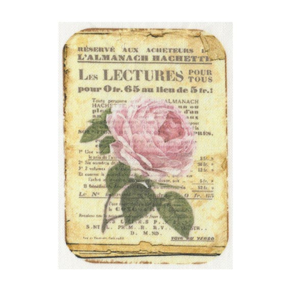 """Applied fusible - Collection """"Old Rose"""" AT406-9"""