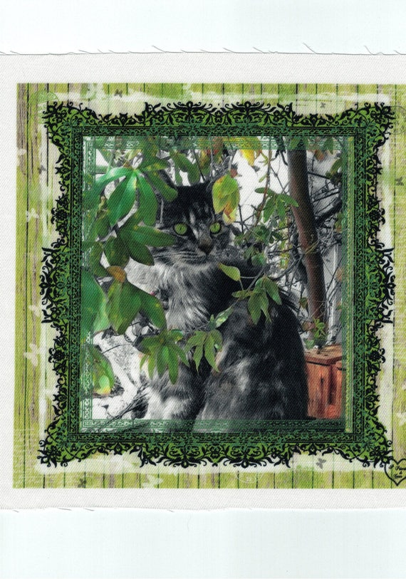 "Cat 2: coupon cat pattern cotton twill ""Irina"""