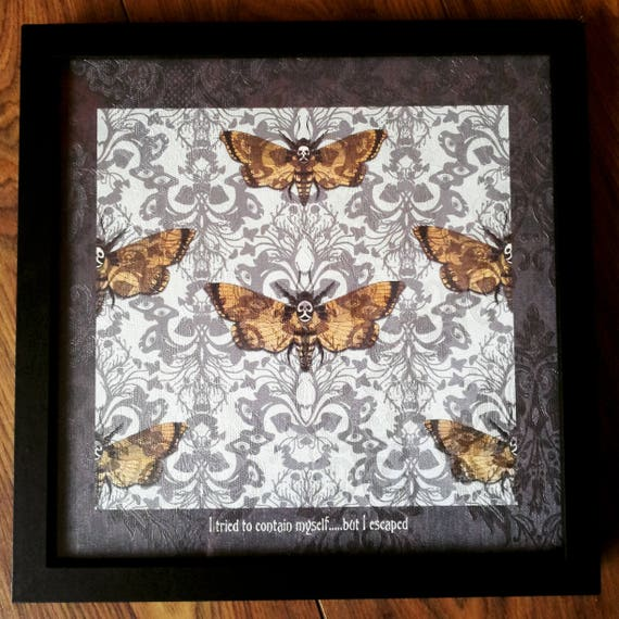 Deaths Head Hawk Moth Framed Gothic Home Decor Artwork Death Moth Textured Wallpape Print