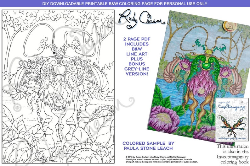 Insectimaginary Actias Protea Luna Moth: downloadable PDF by Ruby Charm  Colors to print & color, adult coloring page, bug, insect, nature