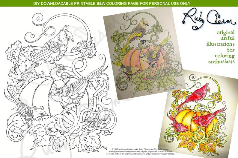 3 Birds on Pumpkin: downloadable PDF by Ruby Charm Colors, print and color  adult coloring page, bird, birds, pumpkin, garden, nature, fall