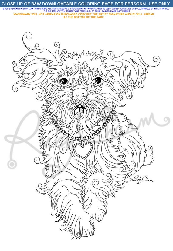 shih tzu coloring pages - Google Search   Horse coloring pages ...   826x570